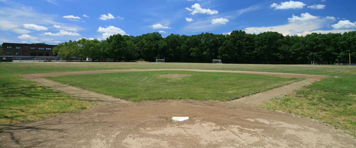 Improve our athletic fields